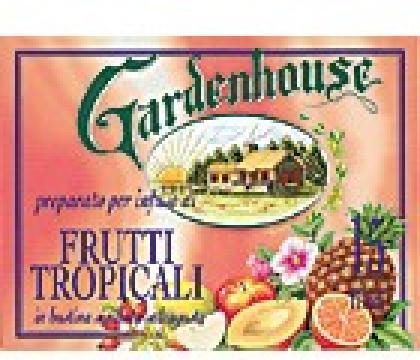 gardenhouse-tropicky-caj-15-x-14-g_68_65.jpg
